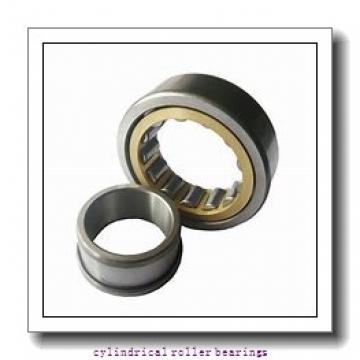 1.969 Inch | 50 Millimeter x 4.331 Inch | 110 Millimeter x 1.063 Inch | 27 Millimeter  LINK BELT MR61310EX  Cylindrical Roller Bearings