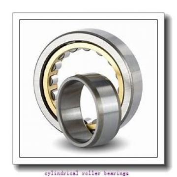 3.346 Inch | 85 Millimeter x 7.087 Inch | 180 Millimeter x 2.875 Inch | 73.025 Millimeter  LINK BELT MU5317UV  Cylindrical Roller Bearings