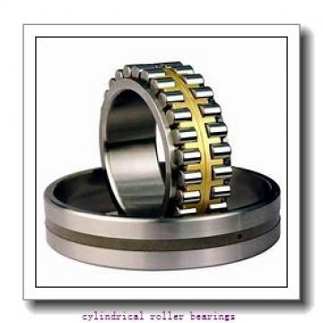 4.724 Inch   120 Millimeter x 8.465 Inch   215 Millimeter x 1.575 Inch   40 Millimeter  LINK BELT MU1224UMW665  Cylindrical Roller Bearings