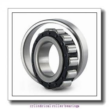 4.131 Inch   104.938 Millimeter x 4.53 Inch   115.057 Millimeter x 0.787 Inch   20 Millimeter  LINK BELT M1015DAH  Cylindrical Roller Bearings